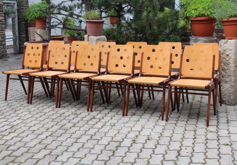 Mid-Century Modern Vintage Twelve Brown Dining Chairs Franz Schuster, 1950s For Sale 5