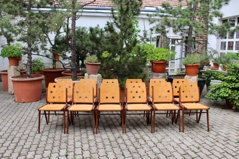 Mid-Century Modern Vintage Twelve Brown Dining Chairs Franz Schuster, 1950s For Sale 6