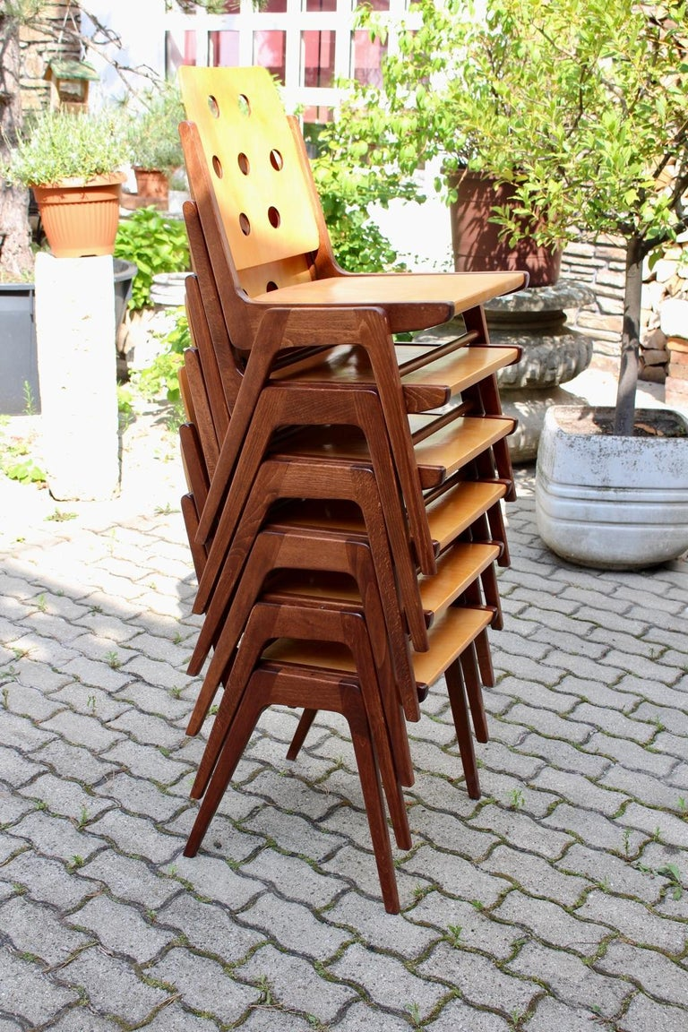 Mid-Century Modern Vintage Twelve Brown Dining Chairs Franz Schuster, 1950s For Sale 11