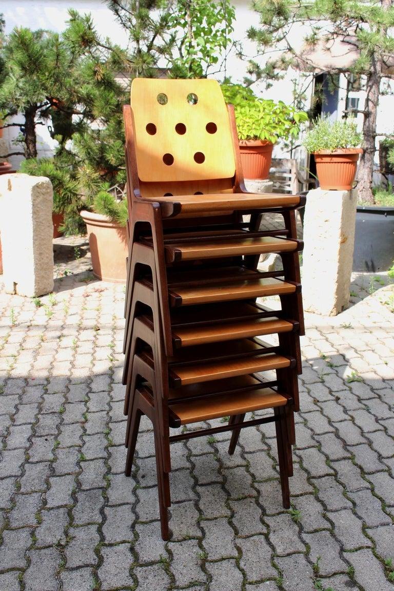 Mid-Century Modern Vintage Twelve Brown Dining Chairs Franz Schuster, 1950s For Sale 12