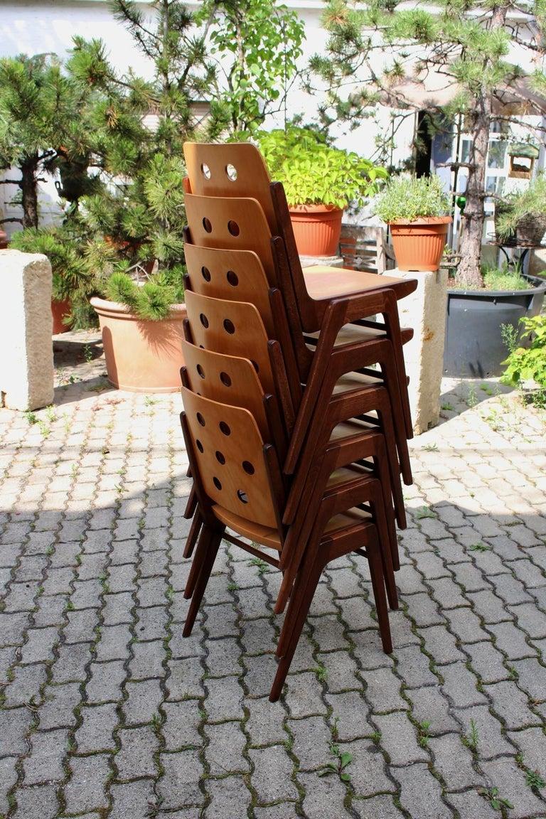 Mid-Century Modern Vintage Twelve Brown Dining Chairs Franz Schuster, 1950s For Sale 13