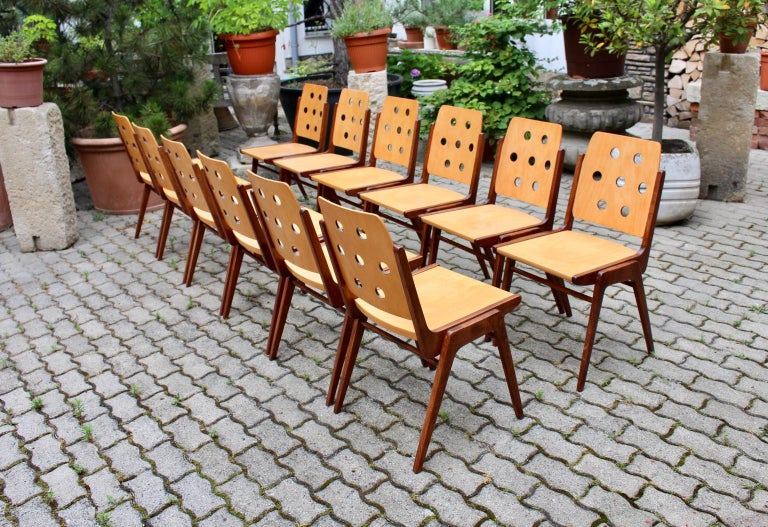 This set of 12 vintage bicolored Austro chairs, which are also stackable, was designed by the popular architect Franz Schuster 1950s and executed by Wiesner-Hager. The frame was made of solid brown stained beechwood and natural lacquered. The seat