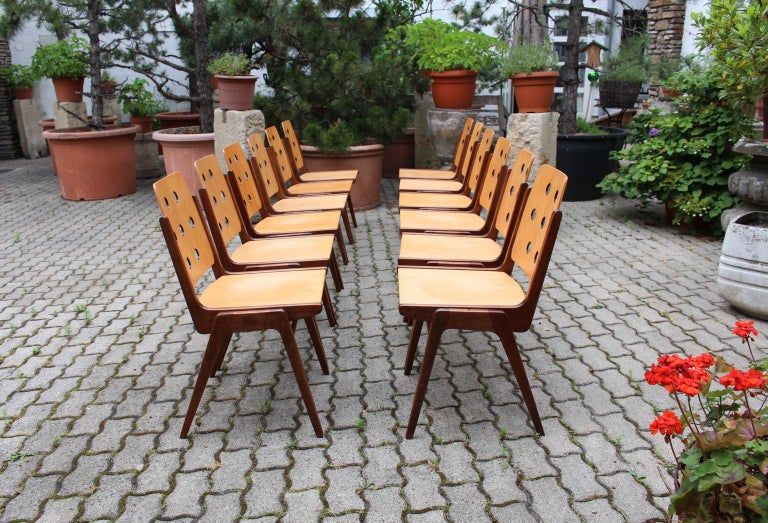 Austrian Mid-Century Modern Vintage Twelve Brown Dining Chairs Franz Schuster, 1950s For Sale