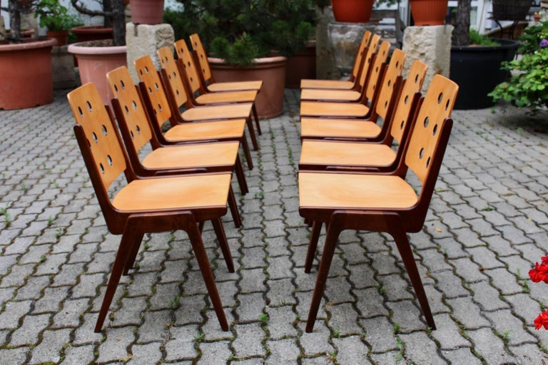 Mid-20th Century Mid-Century Modern Vintage Twelve Brown Dining Chairs Franz Schuster, 1950s For Sale