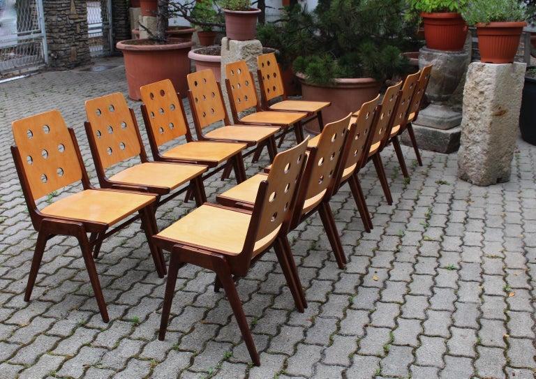 Mid-Century Modern Vintage Twelve Brown Dining Chairs Franz Schuster, 1950s For Sale 1
