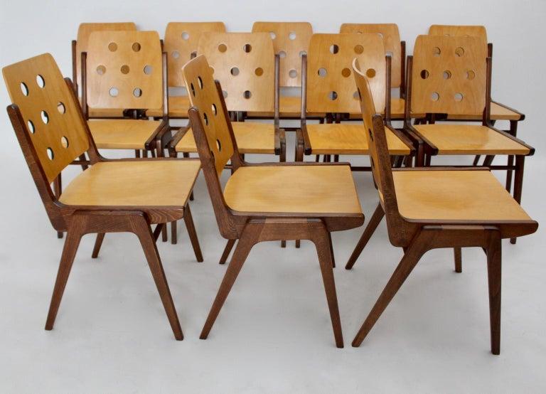 Mid-Century Modern Vintage Twelve Brown Dining Chairs Franz Schuster, 1950s For Sale 2