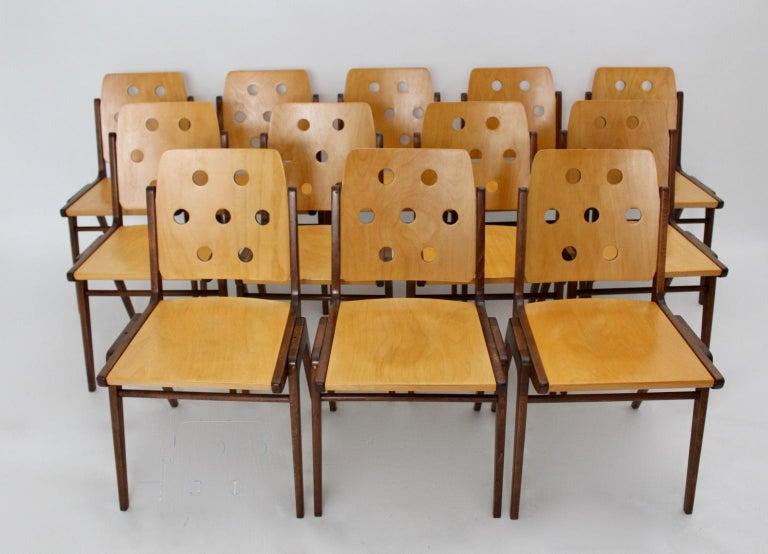 Mid-Century Modern Vintage Twelve Brown Dining Chairs Franz Schuster, 1950s For Sale 3