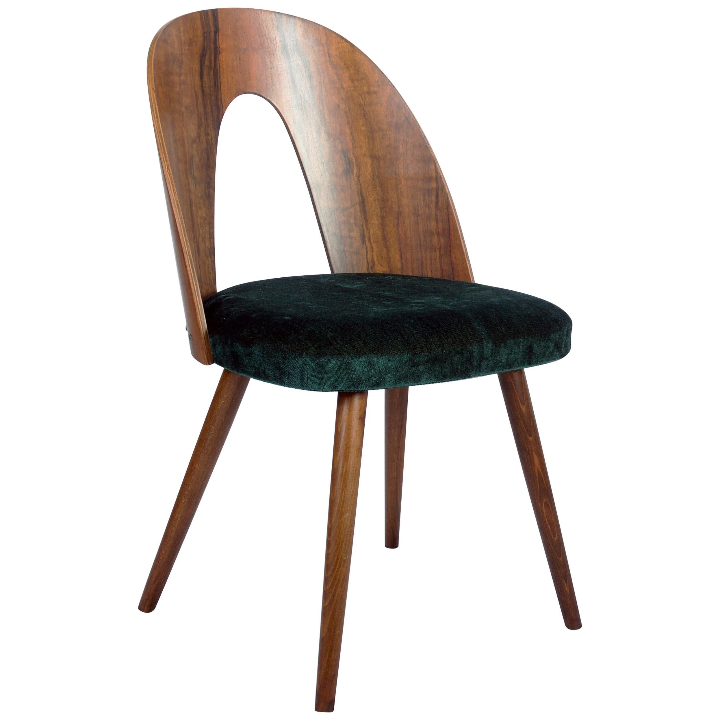 Mid-Century Modern Walnut Dining Chairs by Antonin Suman