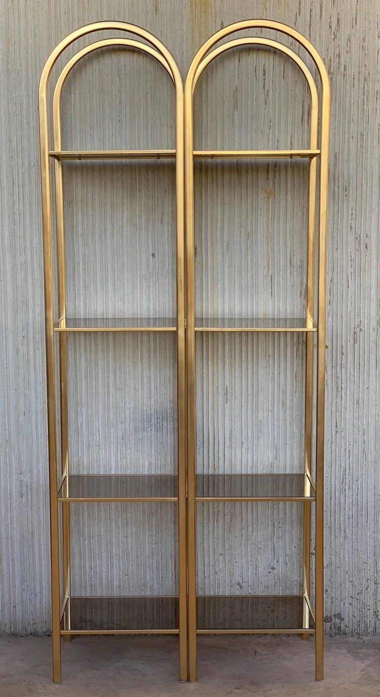 Mid-Century Modern Midcentury Pair of Brass Shelves O Étagères with Smoked Glass For Sale