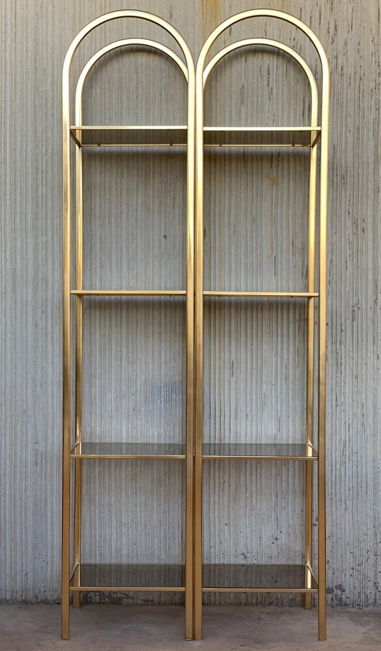 Italian Midcentury Pair of Brass Shelves O Étagères with Smoked Glass For Sale