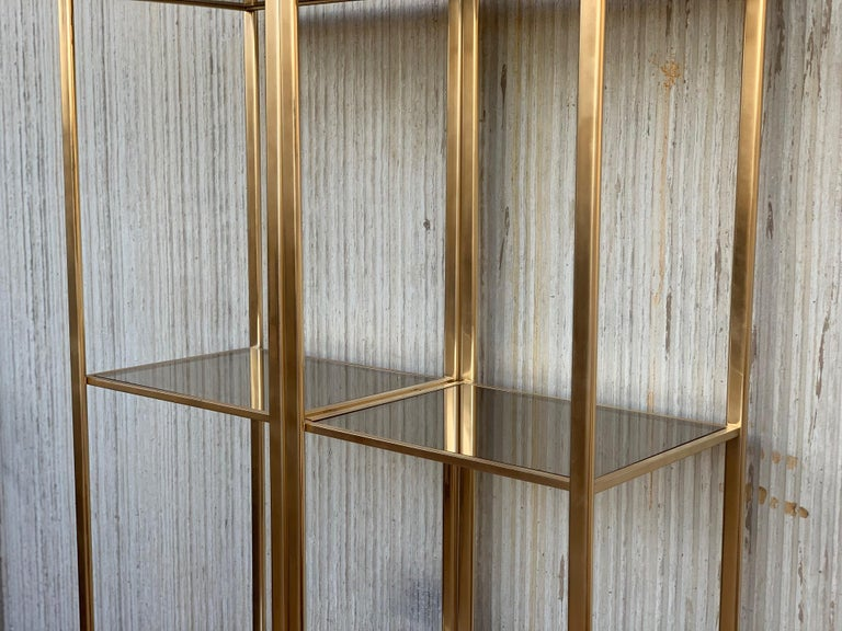 20th Century Midcentury Pair of Brass Shelves O Étagères with Smoked Glass For Sale