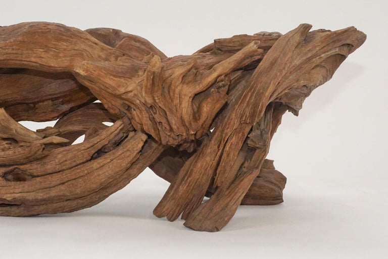 Mid-Century Modern Midcentury Sculptural Driftwood Coffee Table with Biomorphic Freeform Glass Top For Sale