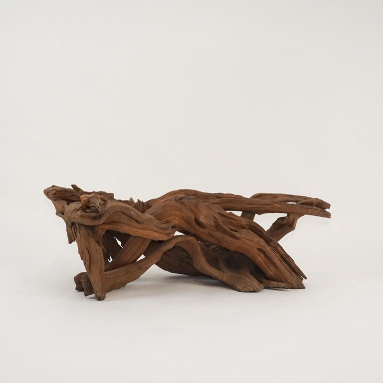 20th Century Midcentury Sculptural Driftwood Coffee Table with Biomorphic Freeform Glass Top For Sale