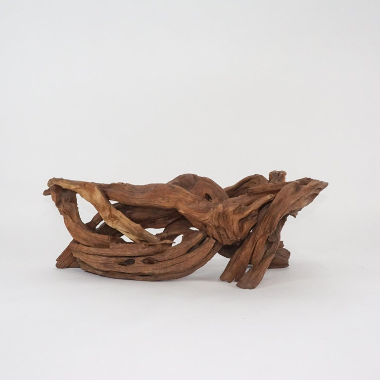 Midcentury Sculptural Driftwood Coffee Table with Biomorphic Freeform Glass Top For Sale 1