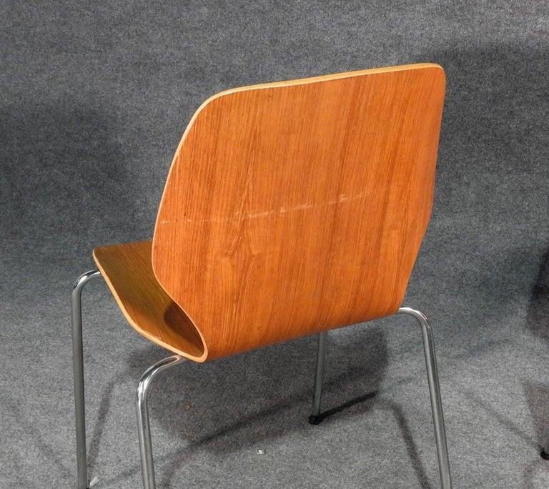Mid-20th Century Midcentury Set of Bentwood Chairs For Sale