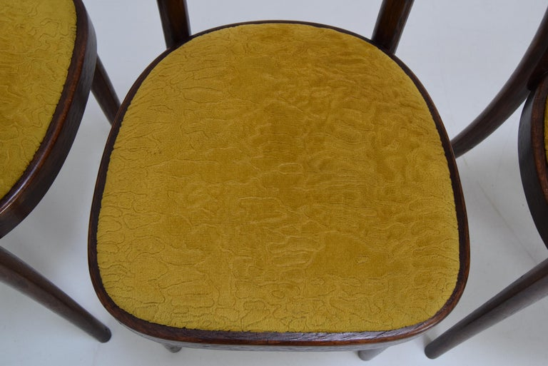 Czech Midcentury Set of Four Chairs or Ton, 1960s For Sale