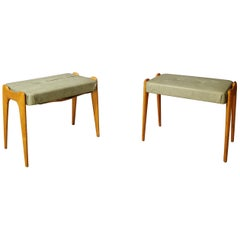 Midcentury Stools in the Style of Gio Ponti in Leather and Maple Wood, 1950s