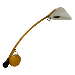 Mid-Century Table Lamp by Domus, 1960s