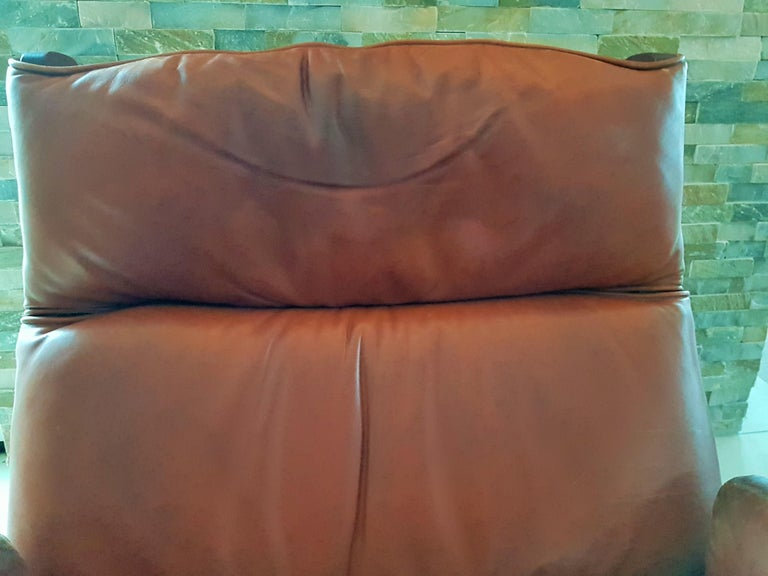 Midcentury 1960s 'Canada' Chair Borsani for Tecno For Sale 3