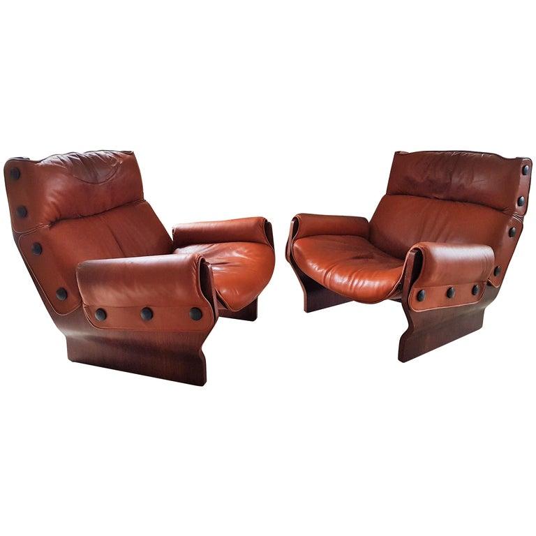Midcentury 1960s 'Canada' Chair Borsani for Tecno For Sale