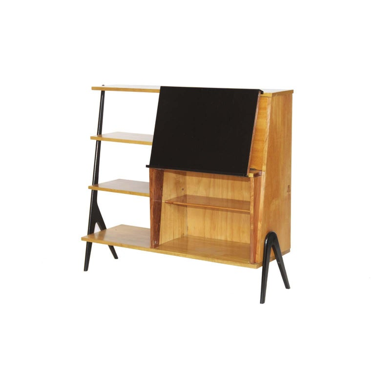 Mid-Century Modern Midcentury Brazilian Bookcase with Caviúna Wood Structure, 1960s For Sale