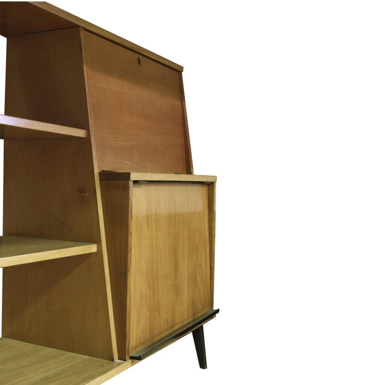 Midcentury Brazilian Bookcase with Caviúna Wood Structure, 1960s In Good Condition For Sale In Sao Paulo, SP