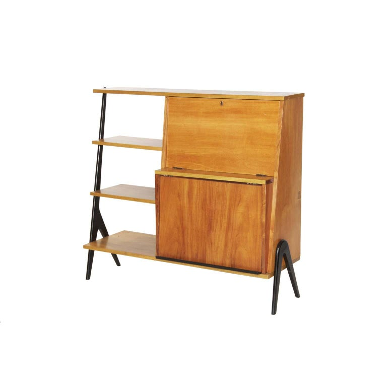 Midcentury Brazilian Bookcase with Caviúna Wood Structure, 1960s For Sale