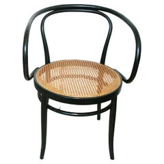 Midcentury Cane and Black Ebonized Bentwood Chair After Thonet 209