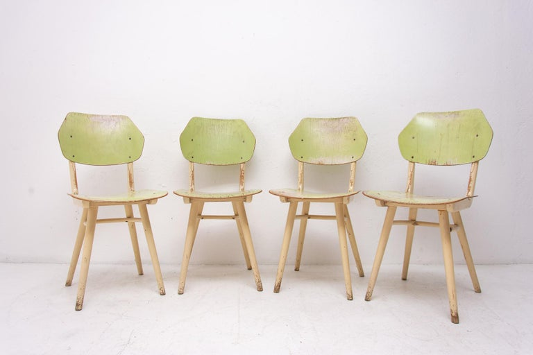Set of four patinated dining chairs from the 1960s. It was produced by TON, Czechoslovakia. The TON company was established as successor to the famous Thonet after World War II in Czechoslovakia and continued the production of bentwood furniture. It