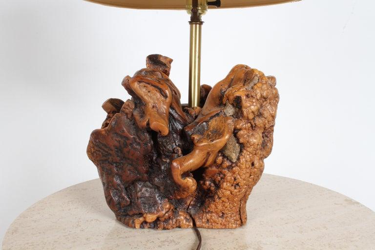 Midcentury Organic Modern Tree Root Lamp For Sale 6