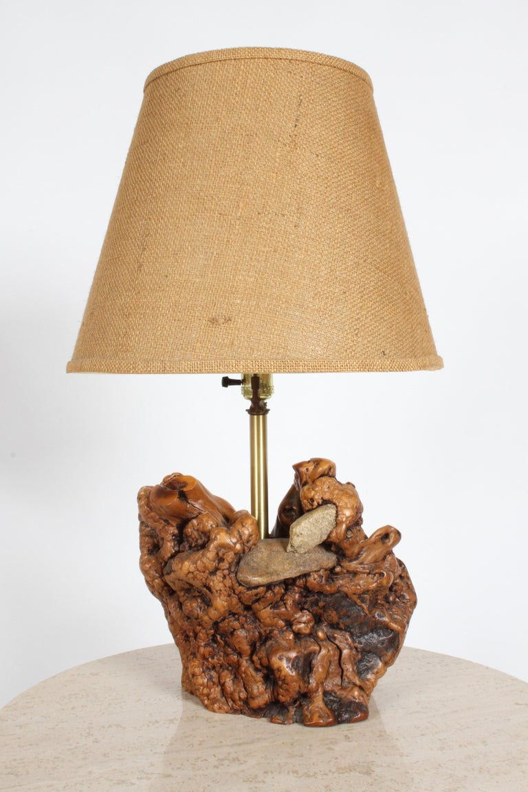 Nice vintage tree root or driftwood lamp sculpted by nature with embedded rocks that tree grew around. This comes from the estate of Morton D. May of May Department stores, major art collector of Pre-Columbian Art, Oceanic Art, Max Beckmann etc,