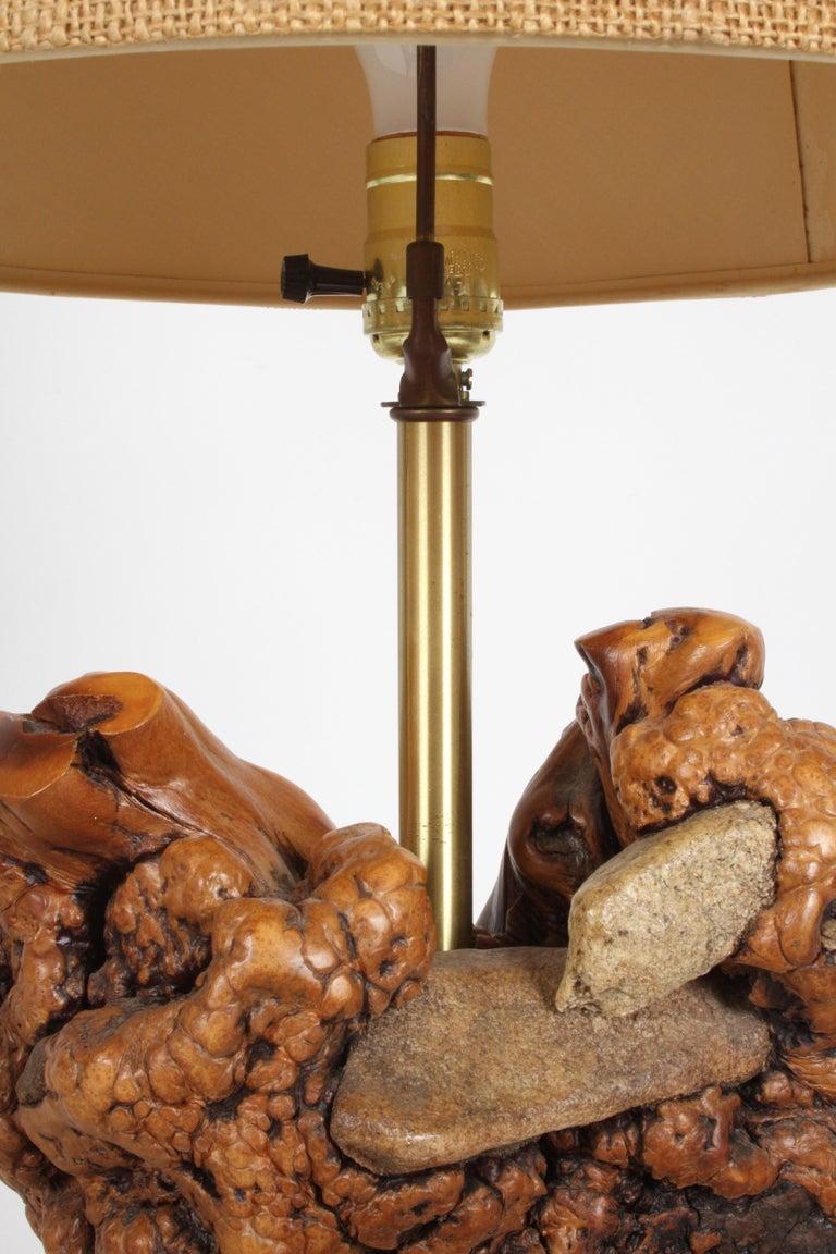 Mid-Century Modern Midcentury Organic Modern Tree Root Lamp For Sale