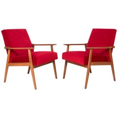 Midcentury Pair of Red Velvet Dante Armchairs, 1960s