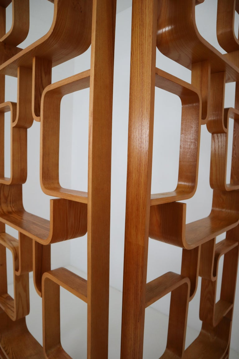 Mid-Century Modern Midcentury Room Divider Shelves for Thonet in Bent-Wood, circa 1960s For Sale