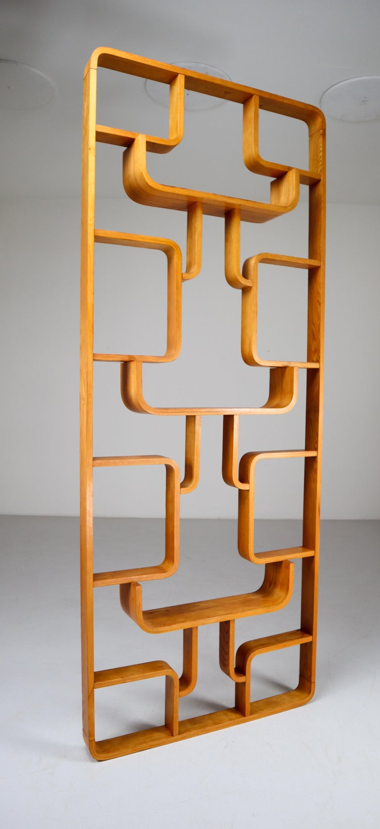 Plywood Midcentury Room Divider Shelves in Bent-Wood Praque, 1950s For Sale