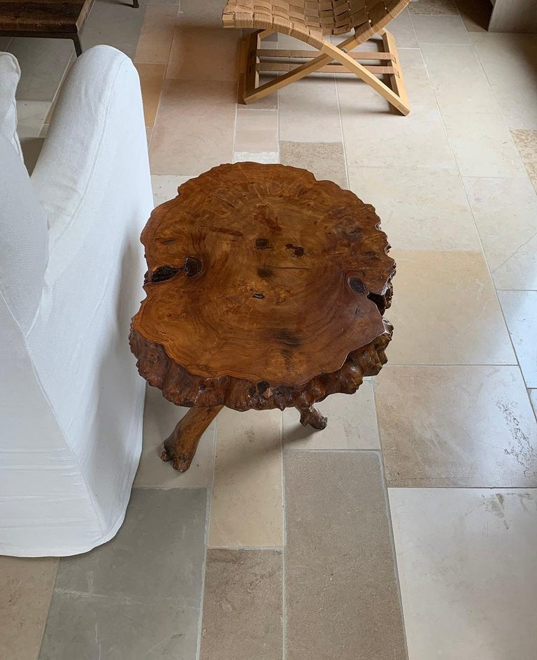 Mid-20th Century Midcentury Root Table For Sale
