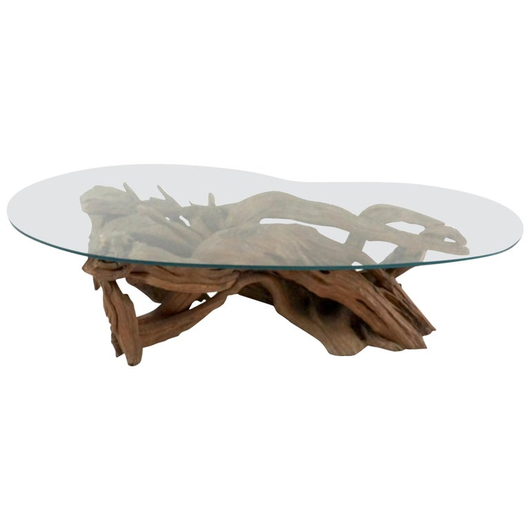 Midcentury Sculptural Driftwood Coffee Table with Biomorphic Freeform Glass Top For Sale