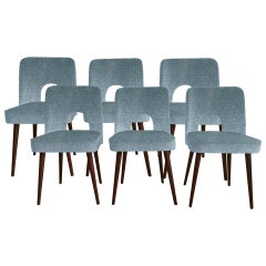 Midcentury 'Shell' Chairs in Blue Velvet by Leśniewski, 1960s, Set of 6