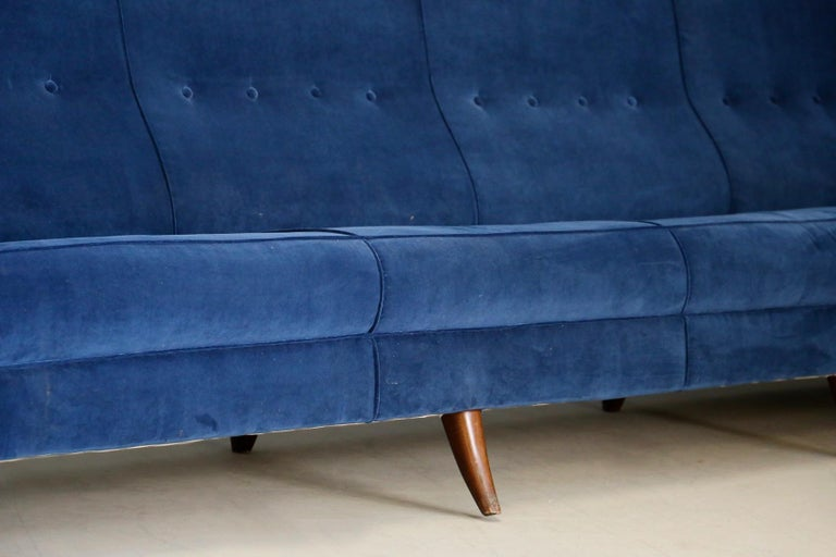 Sofa attributed to Gio Ponti for Isa Bergamo in Blue Velvet, Restored 1950s For Sale 1