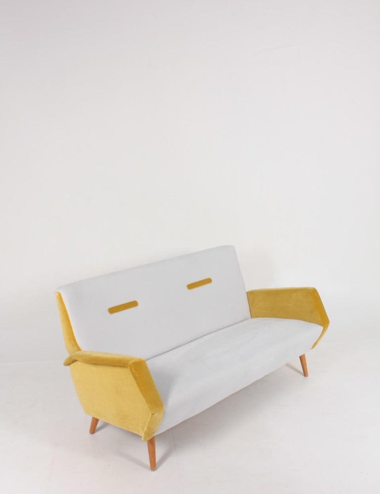 Midcentury Sofa in French Velvet by Gio Ponti, 1950s In Good Condition In Lejre, DK