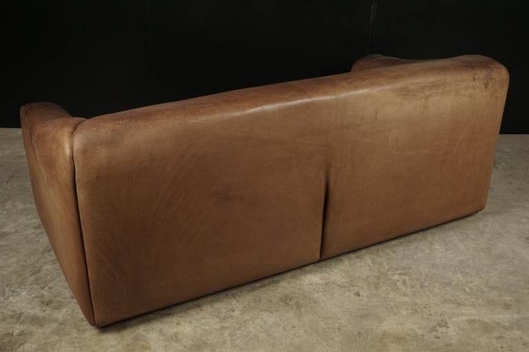 Midcentury Three-Seat Sofa Manufactured by De Sede, Switzerland, Model DS 47 For Sale 1