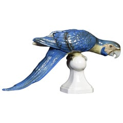 Midcentury Tropical Ceramic Blue Macaw by Royal Dux