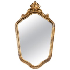 Midcentury Vintage Old Gold and Brown Mirror, Giltwood, Italy, 1960s