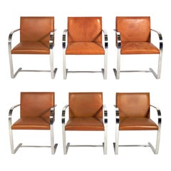 Mies van der Rohe for Knoll Brno Dining Chairs Set of Six