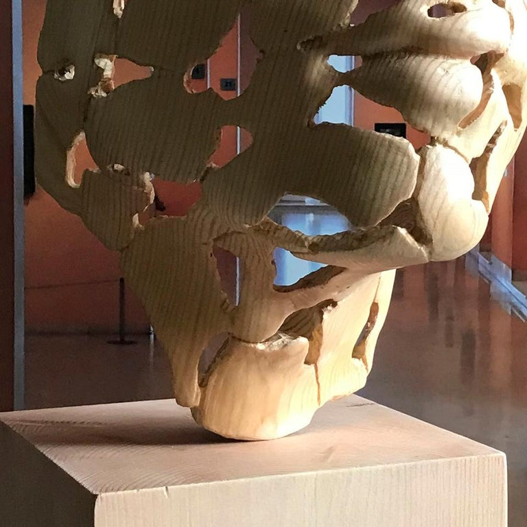 Essence of Youth Wood – Miguel Guía Neo-Expressionist Sweden pine tree Sculpture For Sale 15