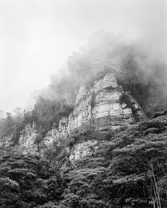 Bosque de niebla Chicaque, Silver Gelatin Print