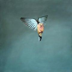 Elysium -minimalist grey and blue wabi-sabi bird painting oil on canvas