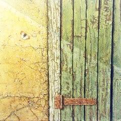 Sunbathing - photorealistic wabi-sabi oil painting butterfly beige decaying door