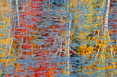 'Autumn Mosaic' by Mike Grandmaison, Photograph, Archival Ink Jet
