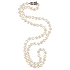 Mikimoto Akoya Pearl Necklace from Marilyn Monroe Era